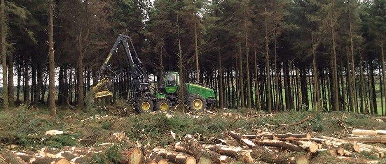 roland-forestry-harvesting-ireland-1